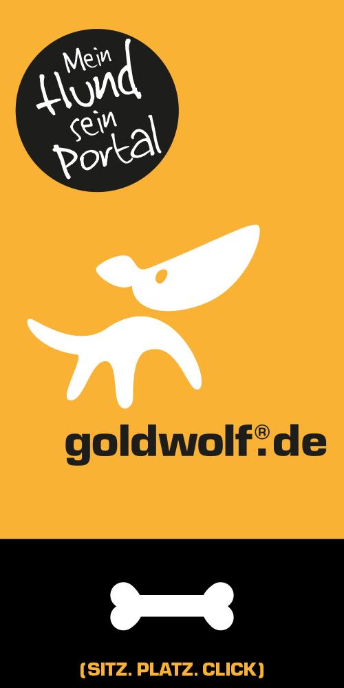 Goldwolf Banner 04