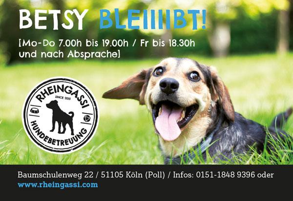Rheingassi Anzeige Betsy